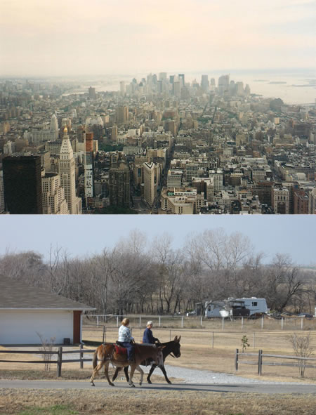 New York City view from Empire State Building, and a country scene with horse riders, views from fashion business regions