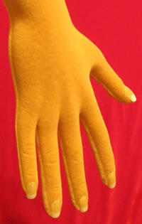 Acrylic fingernails applied to mannequin hands